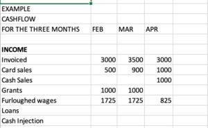 Example cashflow layout showing month column and income rows